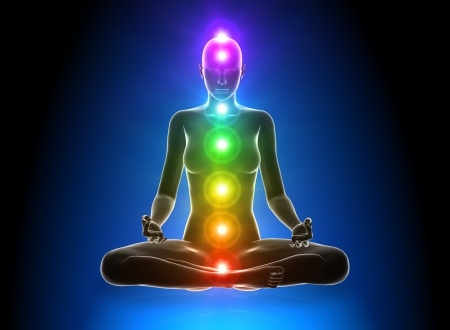 The Chakra body, displaying the seven chakras